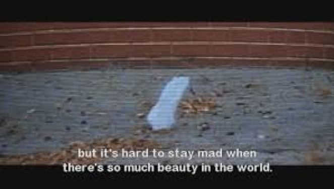 a paper bag blows around a yard in American Beauty