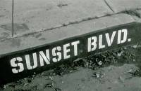 Sunset Blvd written on a curb