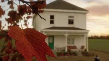a red maple leaf with a house blurred in the distance