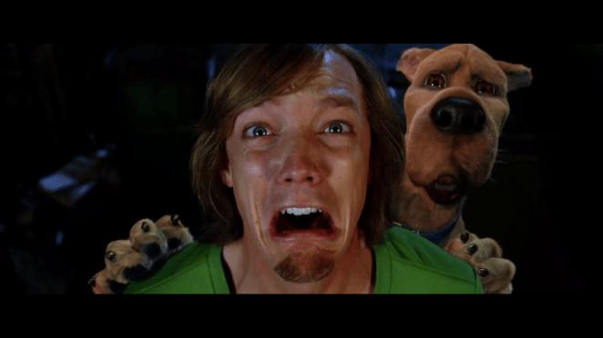 Matthew Lillard in Scooby Doo as Shaggy