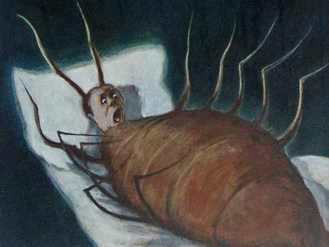 Gregor has uneasy dreams about turning into an insect, The Metamorphosis, Franz Kafka