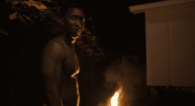 Wayne Hays burns the clothes he was wearing when Harris was murdered, True Detective S3