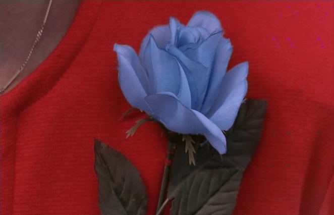A Blue Rose worn by Lil The Dancer in Twin Peaks: Fire Walk With Me
