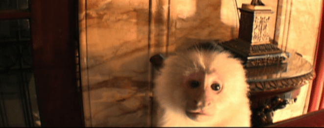 inland empire monkey.PNG