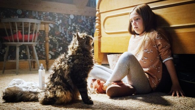 girl and cat sitting together on the floor