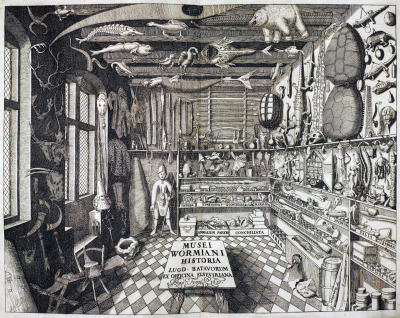 'Musei Wormiani Historia', the frontispiece from the Museum Wormianum depicting Ole Worm's cabinet of curiosities.