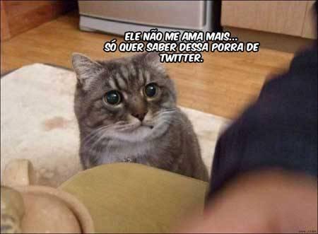 catupiry:  Verdade.
