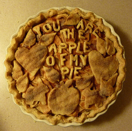 "grayskymorning:  by pippijewelry  sexy southern comfort apple pie recipe via 20Something Cupcakes  ""Best pie, ever?"" I asked. ""Like, best apple pie?"" ""No. Best pie ever. Any pie. This apple pie is better than any other pie in the world."" Bold words. Bold words for a bold pie. This is not your grandmother's  apple pie. This apple pie is sexy. Dangerous. This apple pie lives on  the edge. It all starts with a perfectly buttery, flaky crust. The pie dough is  easy to work with, which earns extra points in my book. But the  Southern Comfort-caramel-super cinnamon-y apple filling is clearly the  star of the show. Say it with me: Southern Comfort-caramel-super  cinnamon-y apple filling. These are ingredients that clearly belong  together. I had to go out and buy a bottle of Southern Comfort, because  yes, my college days are over, and I'm not exactly tossing back SoCo  lime shots at home on a quiet Friday night – though I do have quite a  bit left in the bottle, and a few limes sitting in a bowl on the  counter, so I'd be lying if I didn't see anything happening with that in  my near future. In the Pastry Queen cookbook, the recipe  is called ""Chef Mark's Southern Comfort Apple Pie,"" so wherever you are,  Chef Mark, I salute you for discovering this heavenly combination. It  takes a true chef and stroke of genius to pair something as wild as  Southern Comfort (what is it, anyway?…a whiskey of some sort, but it  sort of falls into it's own subcategory) with apple pie. It's magic. I have to tell you, this is the first apple pie I've ever made, but  as I understand there are many ways you can make it. Often, apples are  placed directly into the pie crust rather than cooked down in a pan. In  this recipe, the apples are cooked down just a bit and then removed from  the pan, where what's left becomes the most marvelous Southern  Comfort-caramel sauce. Don't be nervous by my mention of the word  caramel; this isn't that difficult kind of caramel people are always  losing their wig about, but just a thick, pourable sauce that the  Southern Comfort gets poured into and cooked down until the alcohol  burns away, at which point a nice pour of heavy cream is added. Can you  think of a time when adding a little heavy cream was a bad thing? Me  neither. And then there's the texture of the apples. They retain their shape  and bite – we're talking the antithesis of mushy apples. And they're  perfectly tart against the sugary cinnamon-spiked caramel. The topping  is equally delicious – it's a streusel/praline/crumb type of topping,  and it will rock your socks. Fact. I should warn you, however, that there is a potential negative effect of making this pie: No apple pie you taste may ever be the same. Serve with vanilla ice cream, cinnamon ice cream, or whipped cream.  Rebecca also offers a Rum-Spiked Caramel Sauce to serve it with, but  this pie doesn't even come close to needing any of that business. {Click here to see what the other members of Project Pastry Queen thought} Basic Pie Crust: 2 cups all-purpose flour 1/2 teaspoon salt 2 tablespoons sugar 2/3 cup (10-2/3 tablespoons) chilled unsalted butter 4 to 5 tablespoons ice water  Using a mixer fitted with a paddle attachment, combine flour, salt,  and sugar on low speed for about 30 seconds. Cut butter into 1/2-inch  cubes. Add butter to flour mixture and combine on low speed for 1 to 1  1/2 minutes until mixture looks crumbly, with bits of dough the size of  peas. Add 4 tablespoons ice water, 1 tablespoon at a time, mixing on low  speed for 10 seconds after each addition. After final addition, dough  should begin to clump together in a ball. If it doesn't, continue mixing  for about 10 seconds longer. (If it still looks too dry, add 1 more  tablespoon ice water.) Gently mold dough into a disk, cover in plastic  wrap, and refrigerate for at least 1 hour. Transfer unwrapped dough to a lightly floured surface. Roll into a  1/8-inch-thick circle large enough to cover bottom and sides of a  9-inch-diameter deep-dish pie pan; do not use a regular (shallow) pan.  Transfer dough to pie pan, crimping edges with your fingers or a fork.  Prick bottom with a fork. Topping: 1/2 cup pecan halves 1/3 cup sugar 3 tablespoons firmly packed dark-brown sugar 1/2 teaspoon cinnamon 1/4 teaspoon salt 1/3 cup all-purpose flour 1/2 cup (5-1/3 tablespoons) chilled unsalted butter  Preheat oven to 350 degrees. Arrange pecans on a baking sheet in a  single layer and toast until a rich brown, 7 to 9 minutes. Coarsely chop  nuts and set aside. In a food processor fitted with a metal blade, process sugars,  cinnamon, salt, and flour for about 1 minute. Cut butter into small  pieces and add to sugar-flour mixture. Pulse 10 to 15 times until  mixture is crumbly. Remove from processor and stir in pecans.  Refrigerate topping, covered, until ready to use.  Apple Filling: A note on the apples: If you have a nice-sized deep-dish pie pan,  you may have room for more apples. I used 6: 3 Granny Smith, 3  Honeycrisp (my absolute favorite). I truly loved this combination, but  I'm sure those mentioned below would be just as perfect. I probably had  room for one more apple because my Granny Smith's were rather small –  but you don't want to get too apple-crazy, because if you fill the pie  too much, your precious caramel filling will bubble over into the oven.  Bake your pie on top of a baking sheet if you're worried about that  happening. 5 to 6 medium-sized tart apples, such as Braeburn, Cortland, or Winesap 1/2 cup (1 stick) unsalted butter 3 tablespoons cinnamon 1 cup sugar 3/4 cup Southern Comfort liqueur 1/2 cup whipping cream  Increase oven temperature to 375 degrees. Peel, core, and cut apples  into 1/4-inch-thick slices. Melt butter in a large skillet over  medium-high heat. When butter starts to foam, add apples and sauté for 5  to 8 minutes. In a small bowl stir together cinnamon and sugar;  sprinkle on apples, and stir to combine. Simmer apples over medium-low  heat for about 1 minute longer. Remove apples from skillet with a  slotted spoon, leaving as much of butter-sugar mixture in skillet as  possible. Transfer apples to a baking sheet and arrange in a single  layer until ready to use. (If heaped in a pile, they will become soggy.) Pour Southern Comfort into butter-sugar mixture in skillet. Simmer  mixture over medium heat until alcohol burns off, at least 5 minutes  (sniff mixture at close range; if it burns your nostrils, the vapors are  still burning off). Add cream and continue simmering until mixture is  quite thick but still pourable, 5 to 10 minutes. Return apples to  skillet and stir to coat. Pour apples and cream mixture into unbaked piecrust (do not fill to  more than 1/2 inch below top of crust) and sprinkle evenly with topping.  Bake until filling is bubbling and topping is brown, 50 to 60 minutes."