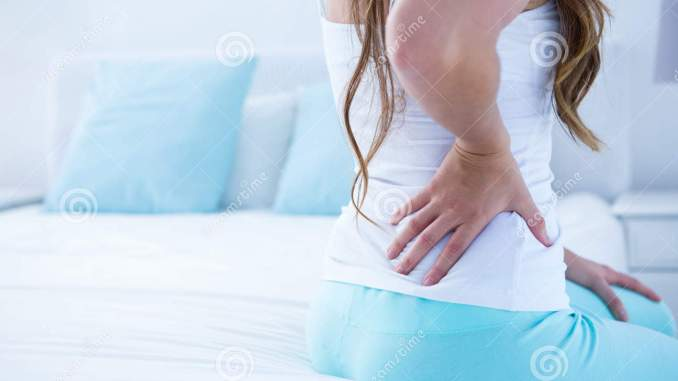 Lower back pain 265article.com