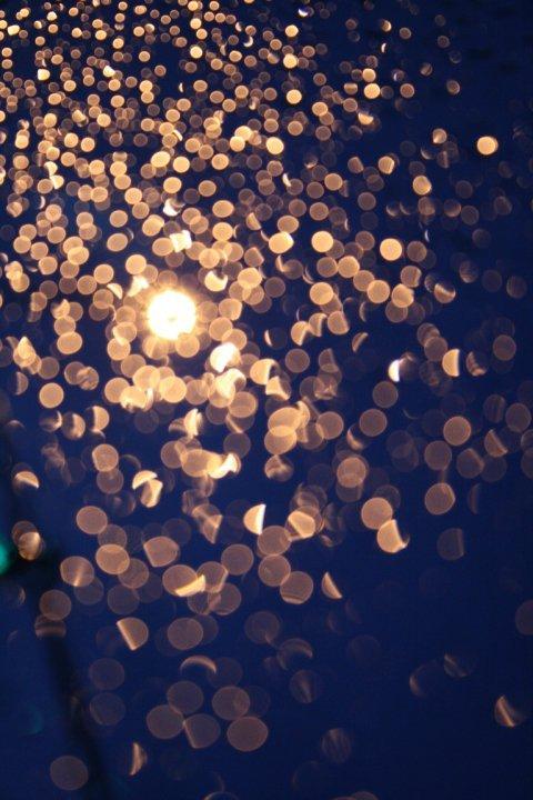 fuckyeahstreetlights:  Street light in the rain. Haley Ludvigsen.