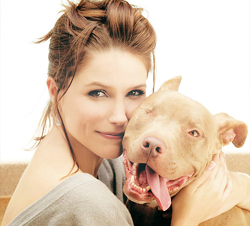 Image result for sophia bush and patch