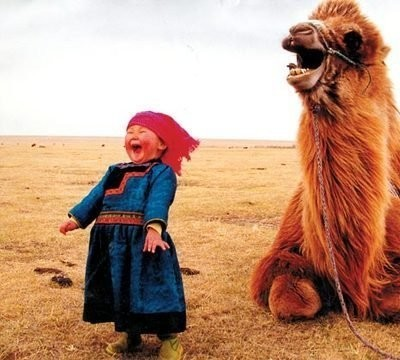It was beautiful. Gobi desert in Mongolia, a little girl and a camel laughing at us: for us: with us.