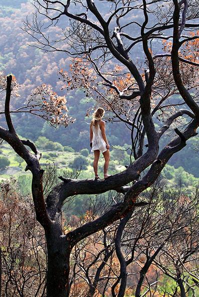 блондинка сред природата