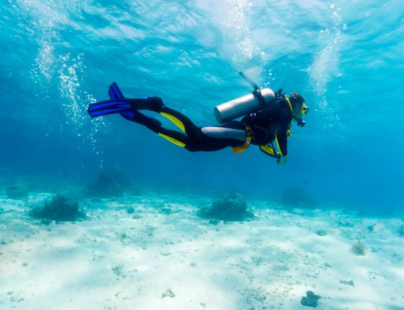 Image result for scuba diver