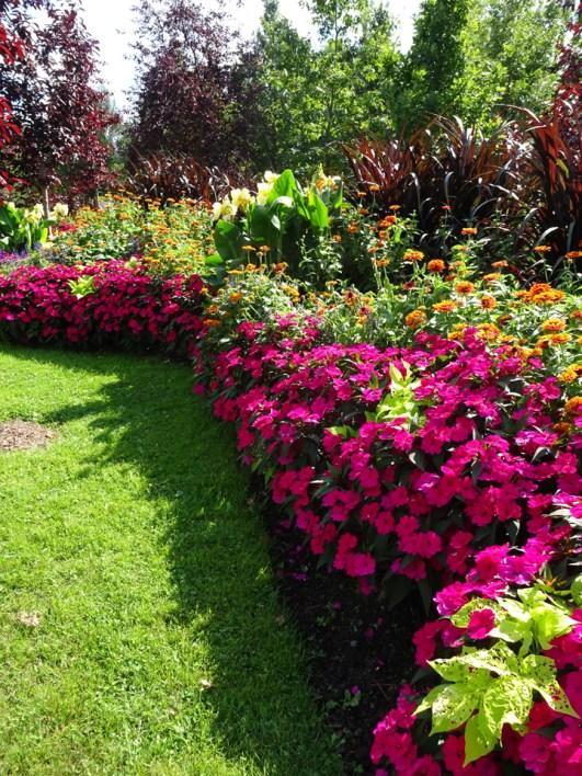 Parc Marie Victorin flower beds