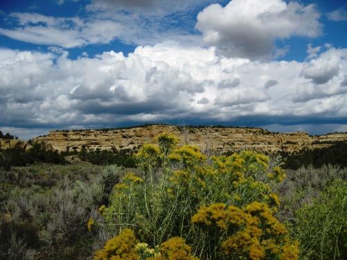 Crow Canyon es un lugar histórico a unos 30 kilómetros al sureste de Farmington, Nuevo México.  Situado en Dinetah, la patria tradicional de los navajos, el sitio contiene una gran variedad de Navajo ruinas y arte rupestre del 16, 17 y 18 centuries.Photo: Bureau of Land Management
