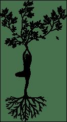Yoga racine et épanouissement - Image par mohamed Hassan