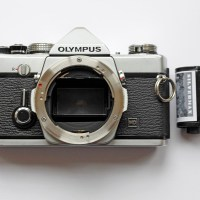 In Praise of the Olympus OM1N