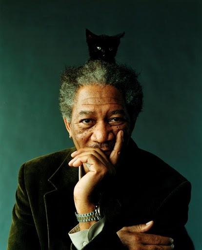 Morgan Freeman with cat