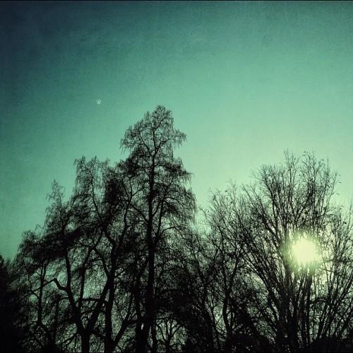 Ambiguous Sun: Rising or Setting?