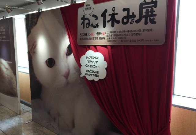 ねこ休み展 柏タカシマヤ予告展レポート!うらちゃん・ふーちゃん特大パネル登場<GWねこ祭り①>