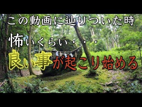【出雲大神宮遠隔参拝】※京都最強パワースポットの恩恵※怖いくらい願いが叶う(Izumo Grand Shrine Kyoto Japan)※縁結 金運 長寿 パワースポットひとり旅#68