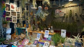 Chalet vendant des plantes sans terre sur le marché de Noël de Nantes