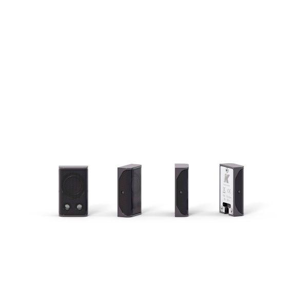 Lyzard KZ1 ultra-miniature aluminum line array element black