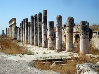 Columns of Apamea, ancient roman town, in Syria