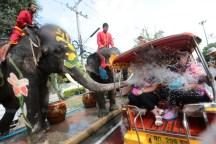 songkran-elephants6