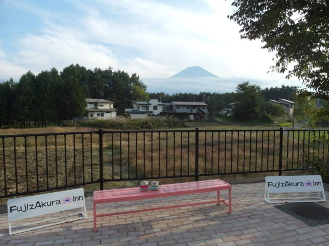 2bearbear and Mount Fuji at Fujizakura Inn