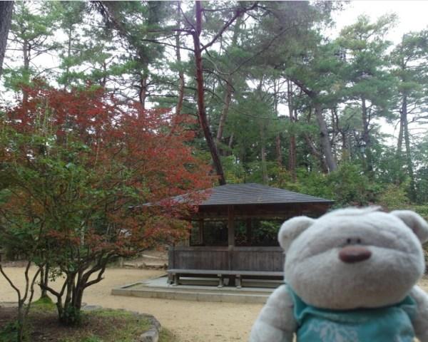 Autumn leaves at Takayama Castle Ruins