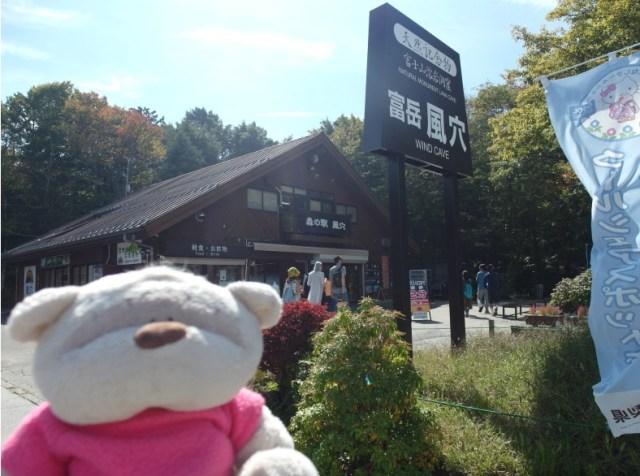 Lake Saiko Mount Fuji Fugaku Wind Cave Bus Stop