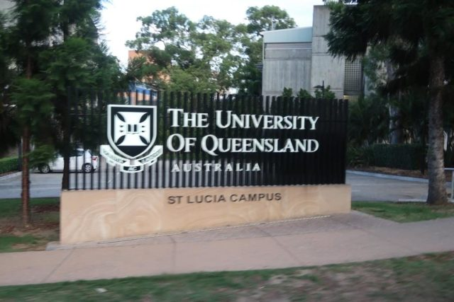 2bearbear @ University of Queensland (St. Lucia Campus - Brisbane)