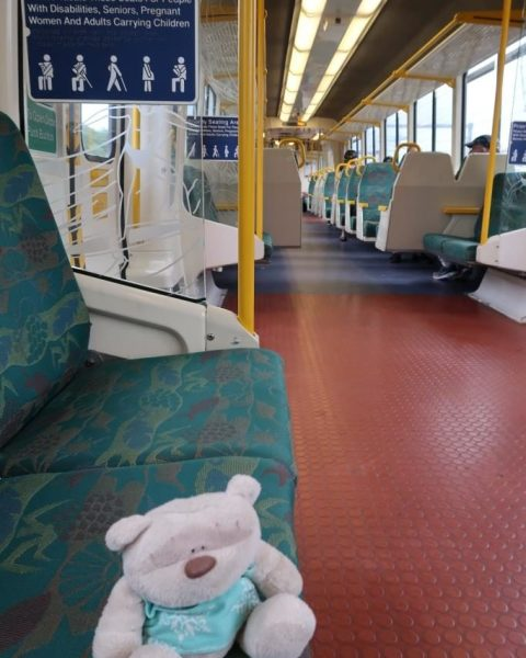 Inside Train from Brisbane to Montville (Eagle Junction Station to Nambour Station)