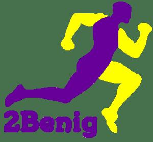 2Benig Logo Voorbeeld