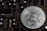 Майнить Bitcoin Cash стало выгодней чем Bitcoin