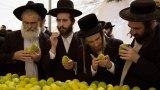 Таки ответим Биткоину: в Израиле хотят запустить национальную криптовалюту