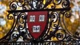 Гарвардские экономисты: крах Биткоина наступит из-за государственного регулирования