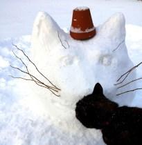 cat_head_snow_3