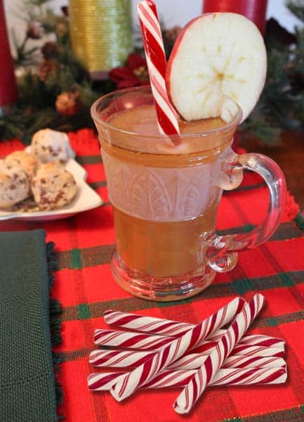 Hot Apple Cider w peppermint | 2CookinMamas