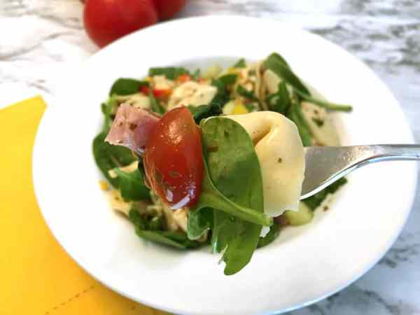 Garden Tortellini Salad with ham bite 2 | 2 Cookin Mamas