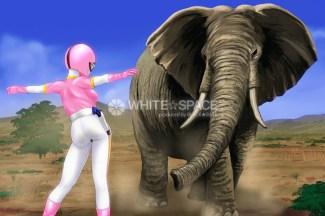 象vsピンク
