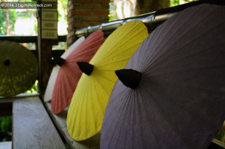 Activities to Avoid in Thailand