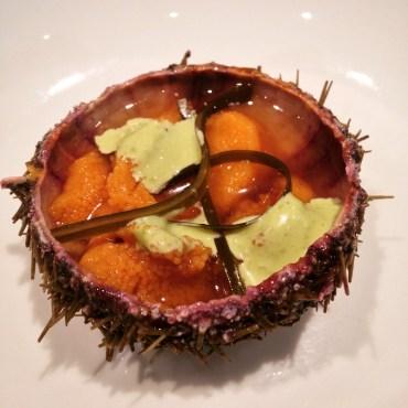green sea urchin