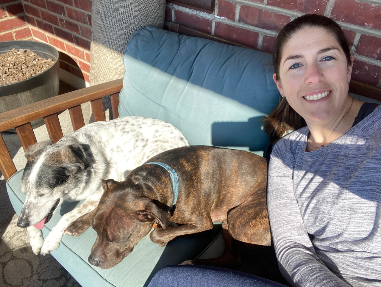 about sarah and her dogs