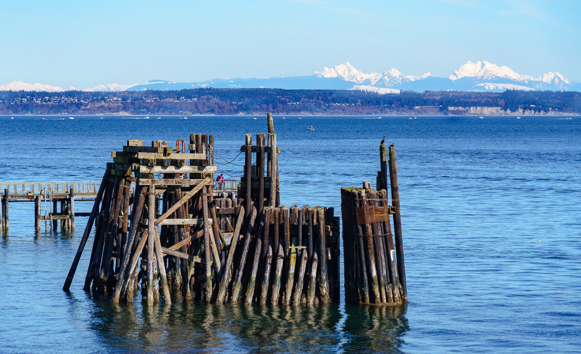 20170310 Hood Canal and Port Townsend ILCE-7RM3 FE 24-240mm F3.5-6.3 OSS HWT00197