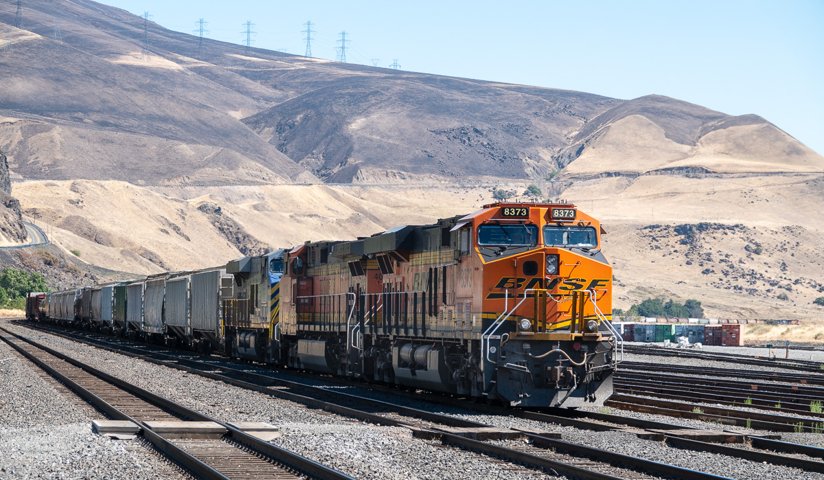 Idling freight at the BNSF yard in Wishram, WA. - Columbia Gorge