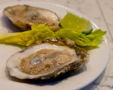 HK Blue Point Oysters
