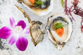 Sushi Roku Oysters on the Half Shell